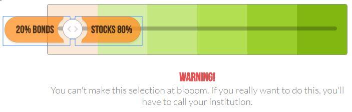 blooom asset allocation